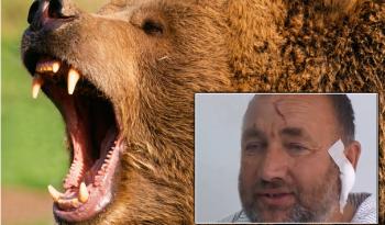 Pastore uccide orso a mani nude bastaunclick
