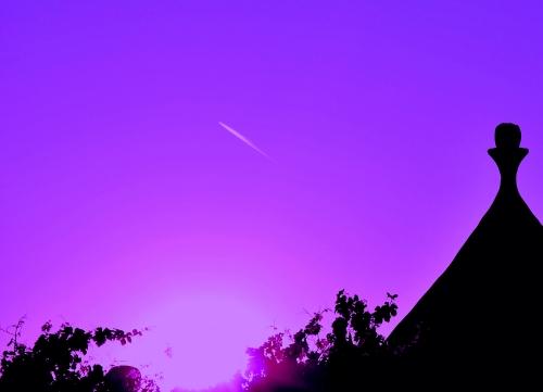 Violetto 9