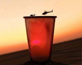 Formica contro elicottero: chi vincerà?