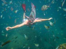 Scoperta un nuova specie nei fondali tropicali: l'uomo pesce!
