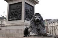 Uno dei leoni a Trafalgar Square
