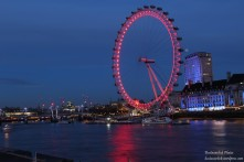 Vista della London Eye dal Westminster Bridge 1